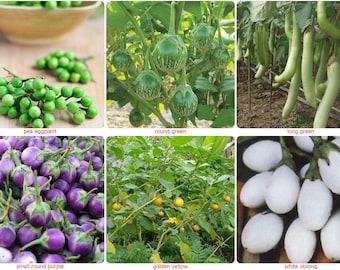 Thai eggplant seeds/aubergine seed-SOLANUM MELONGENA Pea,Round Green,Long Green, Small Round Purple, Round Golden Yellow,White Oblong-choose