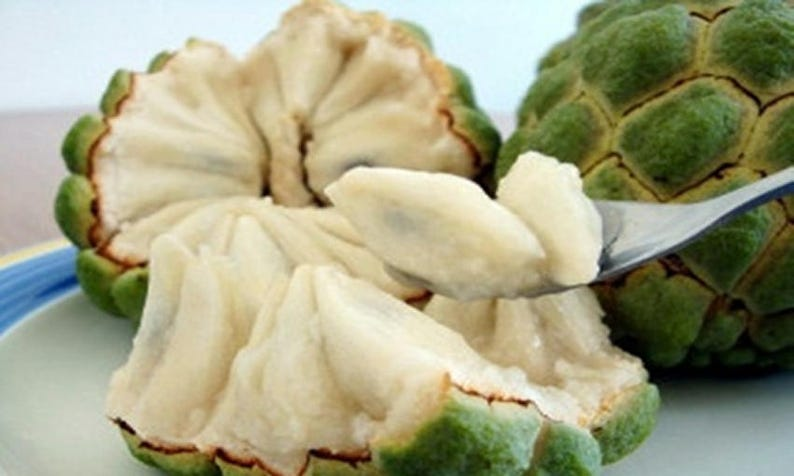Custard Apple Fruit Image