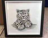 SNOW LEOPARD face original framed illustration Catherine Redgate art drawing watercolour painting big cat animal detail gift cute winter