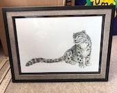 Elegant SNOW LEOPARD original framed illustration Catherine Redgate art drawing watercolour painting big cat animal detail gift proud A4