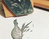 """Windswept country PHEASANT 2"""" 3"""" 4"""" wooden rubber stamper Catherine Redgate Scotland Scottish bird cute funny game stamp stamping bujo craft"""