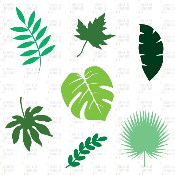 Leaves Svg Bundle Tropical Leaf Fall Leaf Beautiful Leaves Etsy