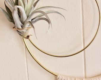 macrame air plant hanger / macrame / wall hanging / air plant holder / hanging planter / modern / small / gold / home decor