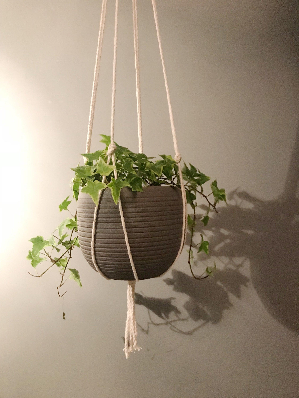 Simple Macrame Plant Hanger Macrame Plant Holder Hanging