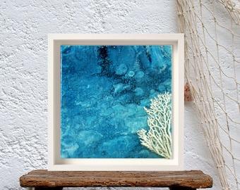 Coral watercolor painting, Shabby chic wall decor bathroom, Coastal  blue wall art sea, Navy nautical art