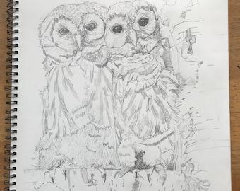 Two Owl Friends