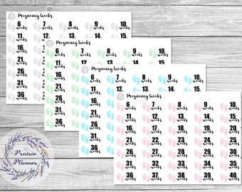 Pregnancy Weeks - Planner Stickers