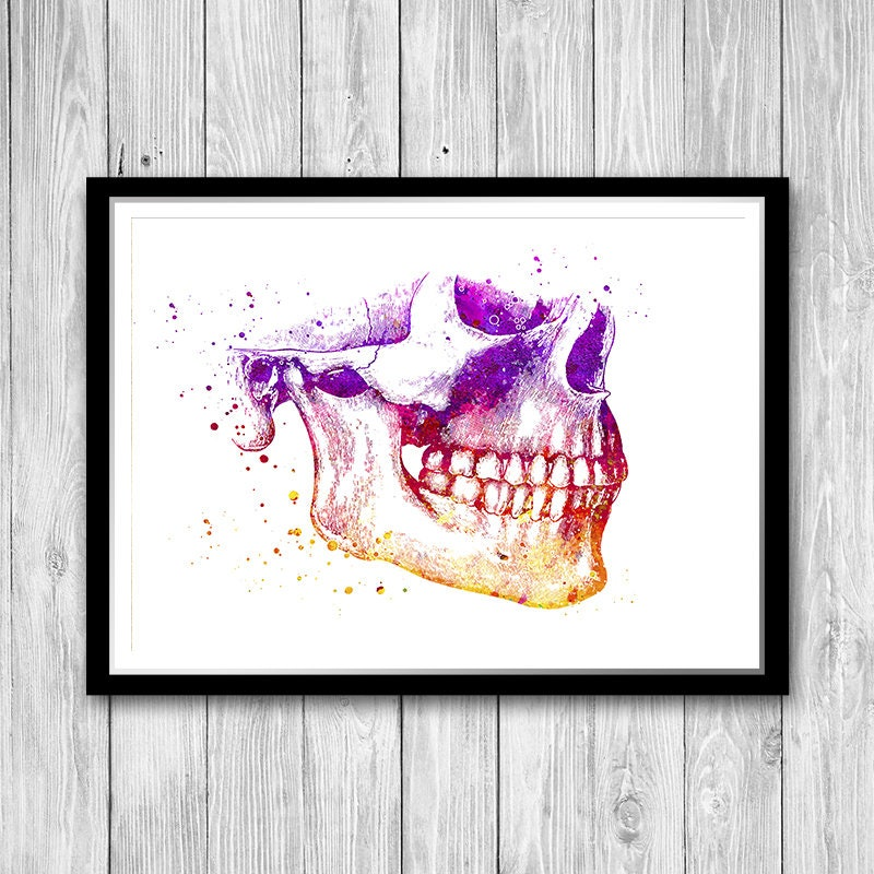 Mandible And Maxilla Human Jaw Anatomy Art Print Lower Jaw Etsy