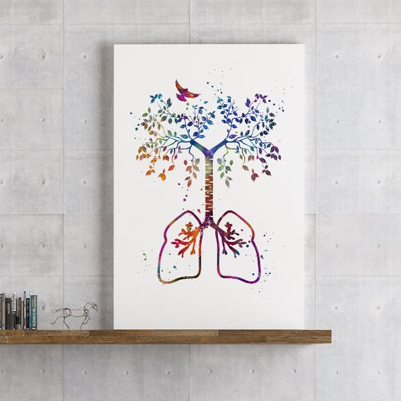 Dental Art Unframed Anatomy Print w// Flowers /& Butterflies dentist office Decor