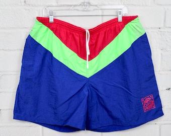 e95e46a102 90s XL Laguna Striped Swimsuit | Mens Vintage Blue Pink & Neon Green Color  Block Swim Trunks | X-Large