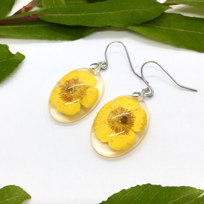 oval real flower earrings with buttercup flowers in eco epoxy resin earhooks made of stainless steel