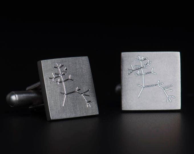Darwin tree of life cufflinks, Science jewelry, Evolution tree jewelry, I think, Geek science cufflinks, Science graduation gift