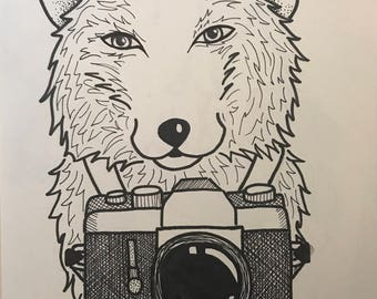 Fox with Camera