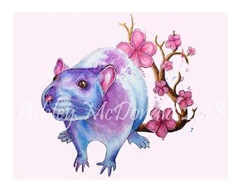 Cherry Blossom Rat Signed Art Print (8x10in)