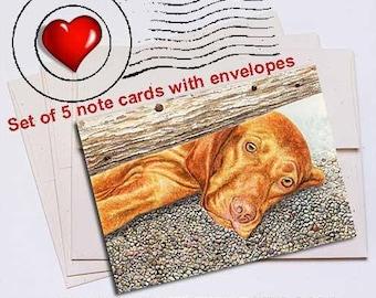 Missing You Vizsla Note Card Set