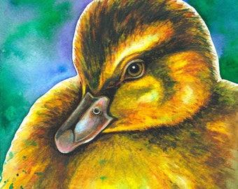 Duckling - Watercolour Print