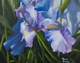"Bearded Iris, 8"" x 8"", Original Oils on Linen Panel"