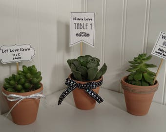 Three 2in SUCCULENT FAVORS. Magnet.Thank you. Wedding. Baby Shower. Bridal Shower. Birthday and More!