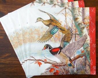 Multi-Colour Nouveau Bird /ès Twittering Paper Napkins 33 x 33 cm