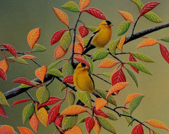 Backyard Goldfinches in a colorful tree