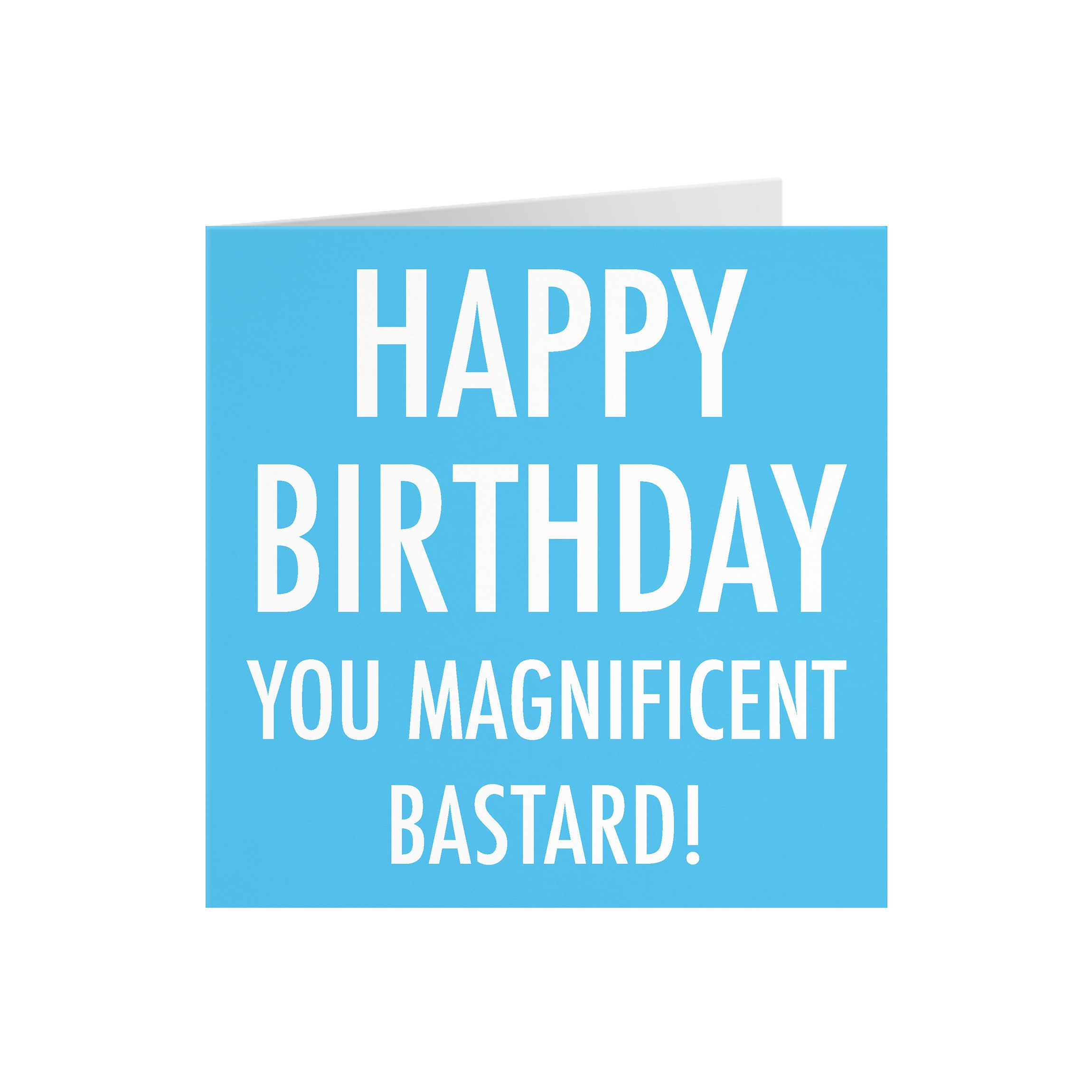 funny rude birthday card happy birthday you magnificent  etsy
