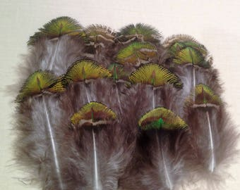 Feather Peacock Green Rugveren