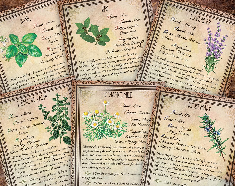 Herb Correspondences