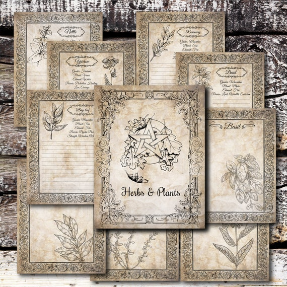 Printable Book Of Shadows Herbs Pages Pdf Spell Book Witch Etsy