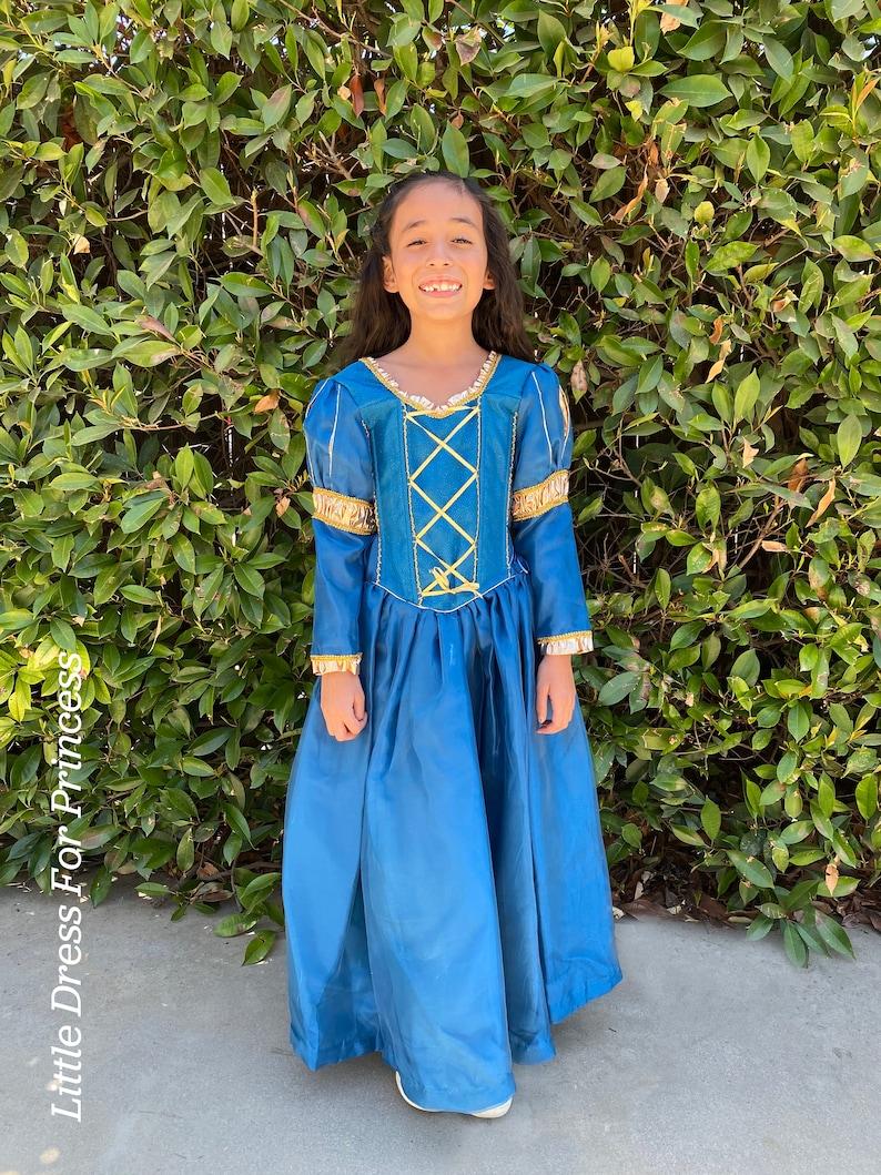 Brave Princess Dress
