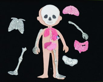 Human Body Board, Anatomy Play Set, Science Toys for Toddlers, Preschool Science Gift
