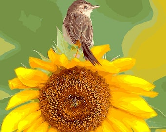 DIY Digital Painting, Sunflower Children's Gift Mother's Day Gift