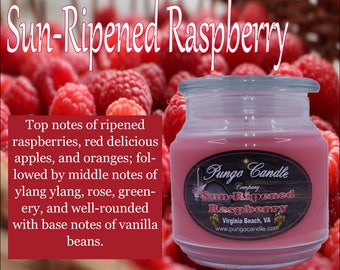 Sun Ripened Raspberry Scented Jar Candle (16 oz.)!Free Shipping