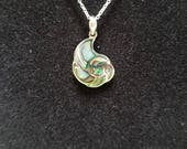 Abalone Shell Necklace. Sterling Silver Inlaid Abalone Shell Pendant. Gorgeous Green and Blue Natural Color.