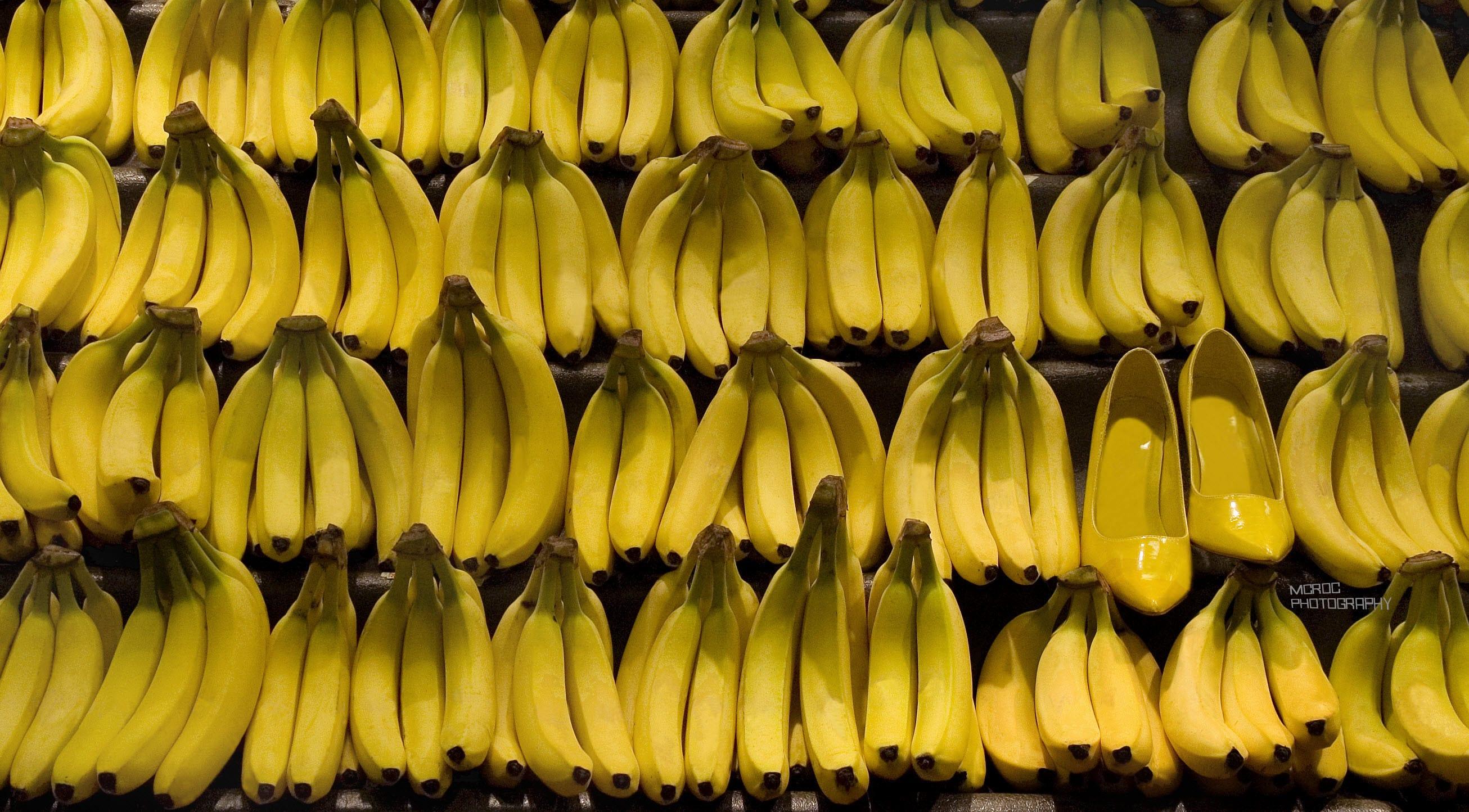 Fun Fashion Food Image Bananas Hidden Shoes Bright Yellow | Etsy