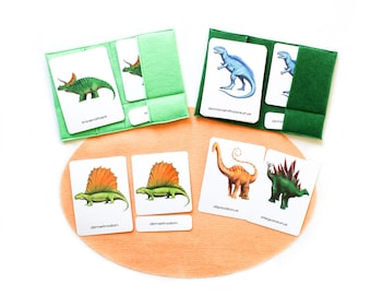 28 Dinosaurs 3-part cards, Homeschooling learning materials, T-rex, paleontology, birthday gift