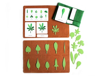 Deluxe shapes of leaves felt playmat, 3-part cards, Montessori botany, back to school, homeschool classroom