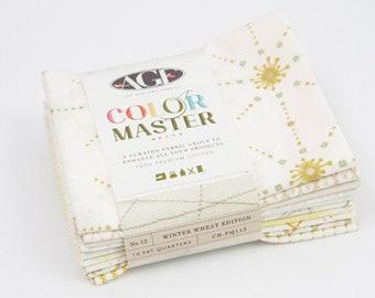 Fat Quarter Bundle  Patchwork Fabric Bundle  Art Gallery Fabric  AGF Color Master Midnight Ocean  blue