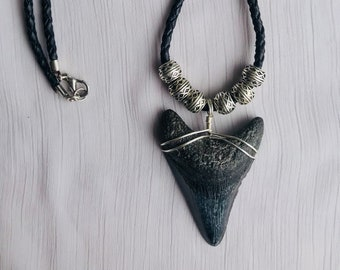 Fossilized Megalodon Shark Tooth Necklace