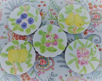 Fruit Du Jour-Hand Painted Plates by Shafford 1987-5 Plates.