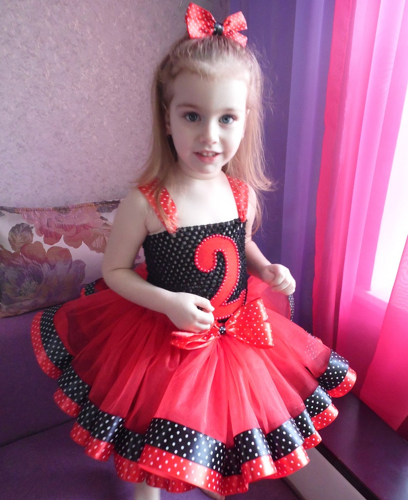 cake smash Minnie Mouse 2nd Birthday tutu Outfit Red and black birthday tutu outfit ladybug birthday outfit Black Red Polka Dot tutu set