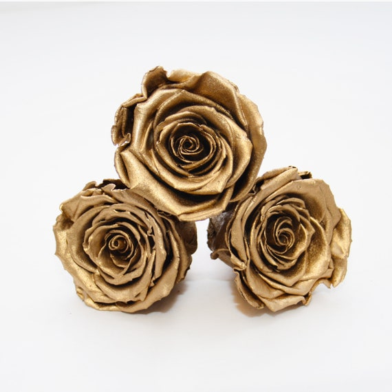 Preserved Rose Heads 6 Roses Gold Preserved Roses Simply Beautiful ! Gold Rose Heads A Gift Remembered For Years