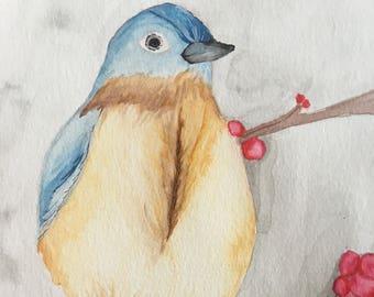 BlueBird from Eastern