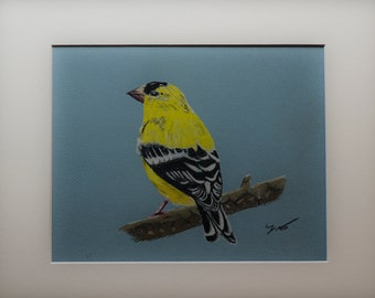 """Gold Finch 9"""" X 12"""" Pastel on Paper"""