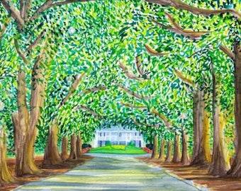 Magnolia Lane- Augusta Golf - Watercolor Giclee Print