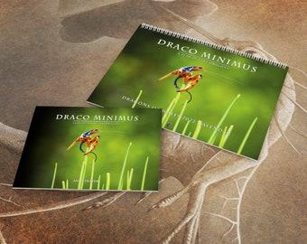 Draco Minimus Calendar and Book Set