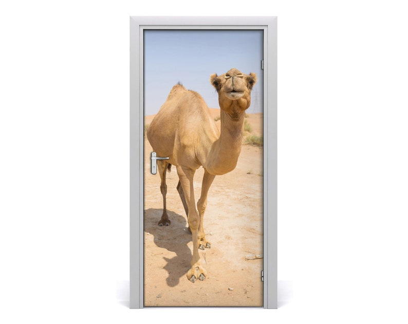Removable Home Door Sticker Self Adhesive Decal Animals Camel in the desert  DS/_82