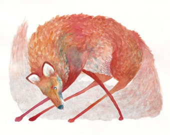 Print of the Red Fox