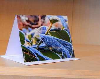 Greetings Card - Frosty Leaves