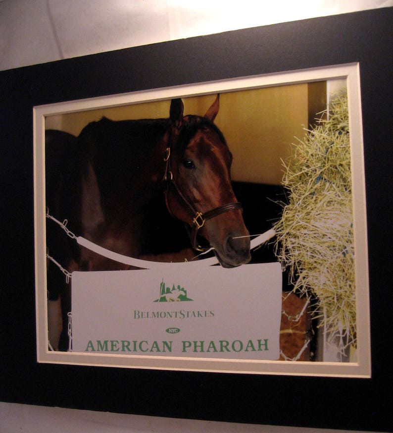 JUSTIFY wins Preakness Stakes Triple Crown 8x10 Double Matted 5x7 Photo print