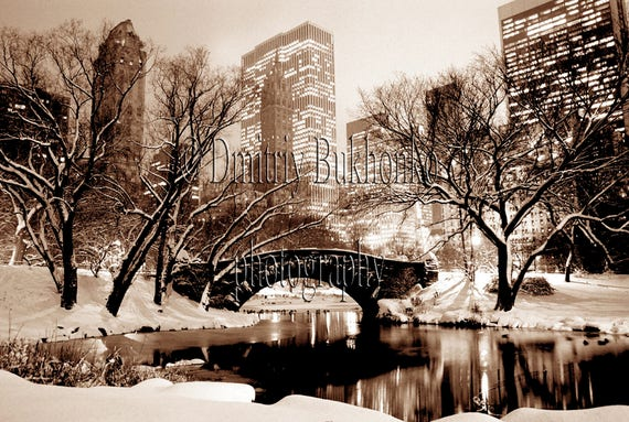 New York Photography Central Park New York New York Canvas Etsy